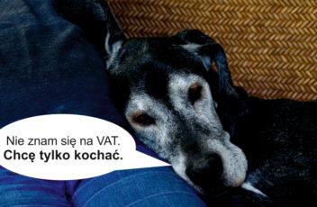 Pies i VAT